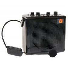 Мощный громкоговоритель  РМ-91 с двумя беспроводными микрофонами